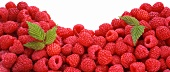 A Pile of Fresh Raspberries