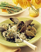 Clams in a Garlic Pesto Sauce with Rice