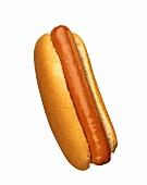 Hot Dog on Bun