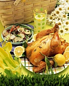 Picnic with Roasted Lemon Chicken and Potato Salad