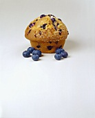 Blueberry Muffin with Blueberries