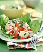Shrimp & Scallop Ceviche on Lettuce with Salsa