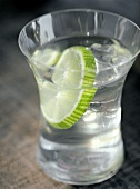 A Slice of Lime in a Glass of Water