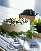 Whole Cheesecake with Fresh Blueberries