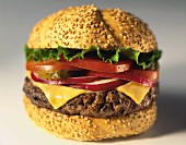 Cheeseburger with onions, gherkin, tomato and lettuce