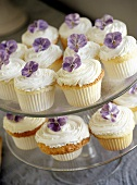 Cup-cakes with cream and violets