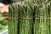 Bundles of Fresh Green Asparagus at the Market