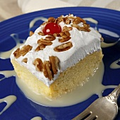 Piece of Tres Leches Cake