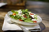 Baby Greens with Cherry Tomatoes and Goat Cheese