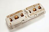 A Closed Carton of Eggs