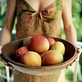 Woman holding bowl of ripe mangos
