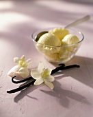 Vanilla ice cream in bowl with spoon; vanilla pods; orchids