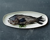 Fresh perch on white platter