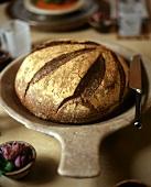 A Round Loaf of Dark Bread