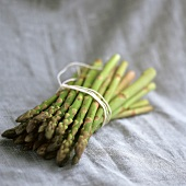 Green asparagus, in a bundle, on purple background