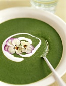Spinach soup with pansies and crème fraîche