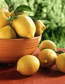 Lemons in bowl and on table in open air
