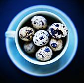 Quail's eggs in blue teacup