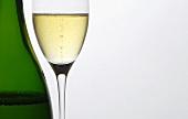 Glass of champagne beside bottle