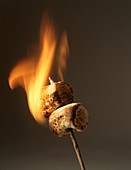 Flambéing marshmallows
