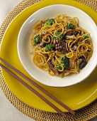 Beef, Broccoli and Pasta Stir Fry