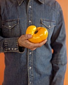 A Man in a Denim Shirt Holding a Yellow Tomato