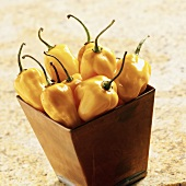 Yellow Habanero Peppers in a Copper Container