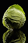 A Head of Cabbage on Black Background with Reflexion