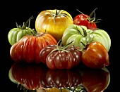 Colorful Assorted Heirloom Tomatoes on Black with Reflection