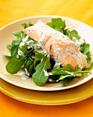Poached Salmon Fillet with Herbed Cream Sauce on a Bed of Arugula