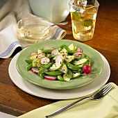 Sugar Snap Pea Salad with Radishes, Cucumber, Sesame Seeds and Vinaigrette