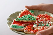 Hands Holding a Plate of Christmas Cookies