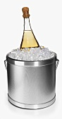 An Ice Bucket with Sparkling Wine