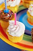 Verschiedene Cupcakes zum Kindergeburtstag
