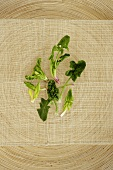 Baby Greens on a Woven Background
