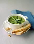 Grüne Spargelsuppe mit Weissbrot