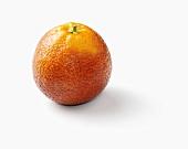 A Whole Blood Orange