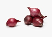 Pile of Whole Baby Red Onions on White Background