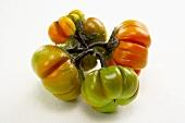 Paprikaschoten (Pumpkin Peppers)