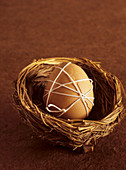 Brown Cracked Egg Wrapped in White String in a Birds Nest