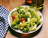 Single Green Leaf Salad with Cucumber and Tomato