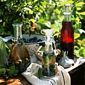 Blueberry Vinegar in Glass Bottles with Fresh Blueberries on an Outdoor Table