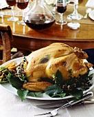 Roast turkey with herbs on platter
