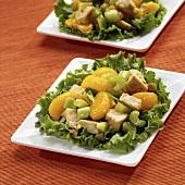 Orange Chicken Salad with Mandarin Oranges, Chicken and Celery Over Lettuce