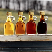 Assorted Grades of Maple Syrup in Glass Bottles in Window