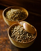 Coriander seeds with cloves of garlic in wooden bowl