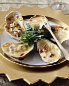 Oysters in their shells with toasted cheese topping