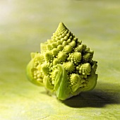 Single Head of Romanesco Cauliflower