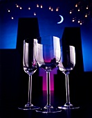 Romantic Evening Wine Glasses