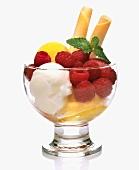 Fruit sorbet with fresh raspberries
